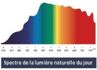 spectre-de-la-lumiere-naturelle-du-jour