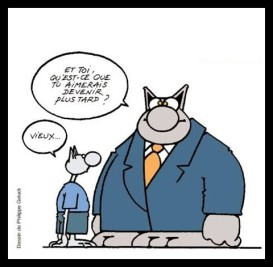 chat-geluck-thumb
